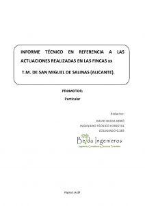 INFORME TÉCNICO ACTUACIONES. AUDITORÍA LEGAL Y TÉCNICA.
