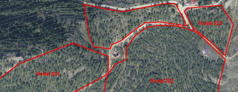beldaingenieros_ordenación forestal