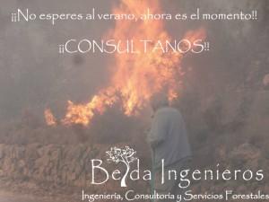 CONVOCATORIA DE AYUDAS PLANES LOCALES DE PREVENCIÓN DE INCENDIOS.