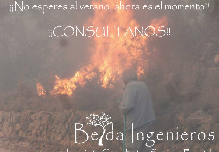 dbelda@beldaingenieros.es